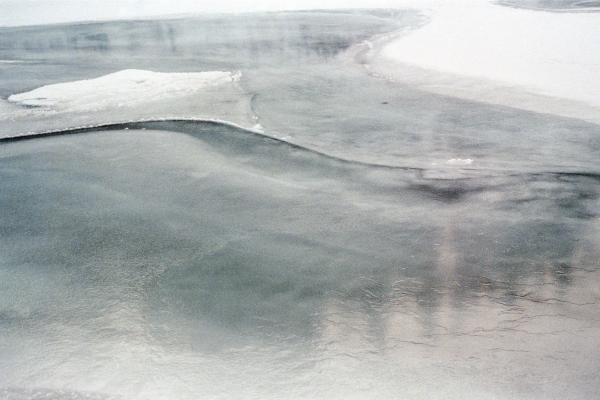 Elbow River (Allen Bill), Alberta, 2020